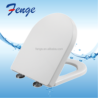 Sanitary ware toilets with quick release stainless steel hinges