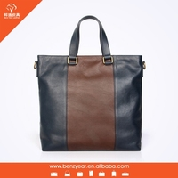 2015 Fashion Design High Quality 100% Genuine Leather Handbag