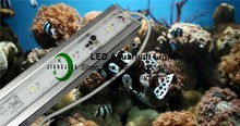 9W 18W 27W 36W 12V Waterproof Aquarium LED Clip Light