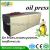 /product-gs/2014-excellent-quality-dl-zyj03-with-high-extraction-rate-family-type-small-olive-oil-press-machine-for-sale-1751848835.html