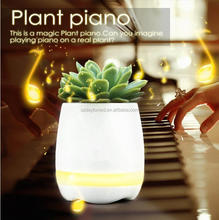 Smart 4 in 1 LED Light Music Flower Pot with Music Playing Function Piano on Real Plant Flowerpot Bluetooth Speaker