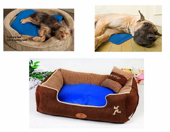 pet ice bed.jpg