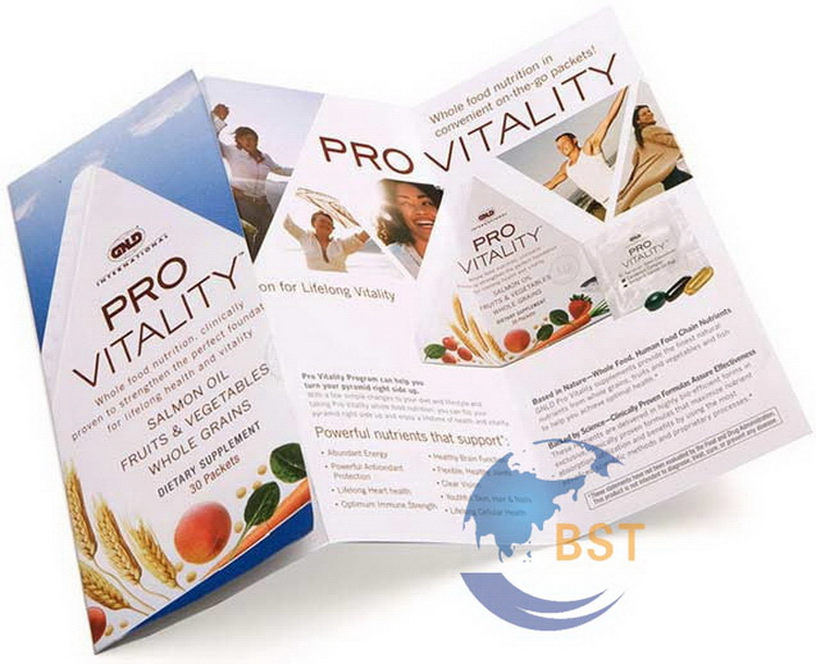 Cheap promotional horizontal brochure printing