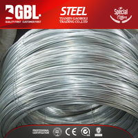 low carbon hot dipped galvanized steel wire for nail making