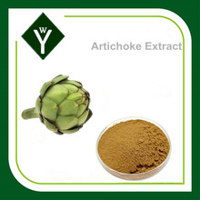Manufacturer directely supply natural Artichoke Extract