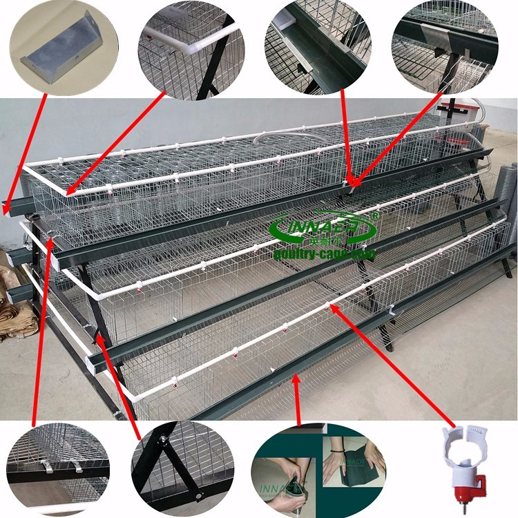 cheap price bird trap cage