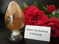 botanical extract green tea extract camellia sinensis leaf extract Polyphenols 50%,80%,95%,98%