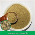 Natural Plant Exract Oregano Herbal Extract Powder