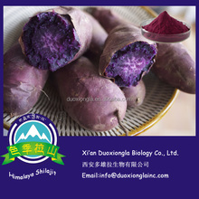 High quality anthocyanin 8% from Purple sweet potato