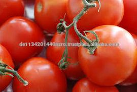 fresh cherry tomatoes for sale
