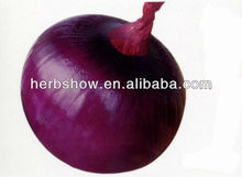 High Yield Yellow/Red/Purple Onion seeds