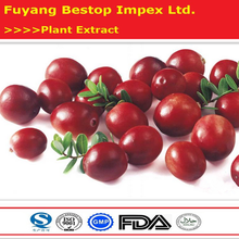 Hong dou yue ju Lingonberry Anthocyanidins Plant Extract