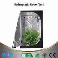 Large Size Home Garden Hydroponic Used