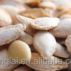 hot sale!!!!high quality Snow white pumpkin seeds pumpkin kernel seeds in cheap price for America market