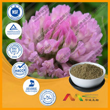 GMP&ISO High Quality Red Clover P.E.