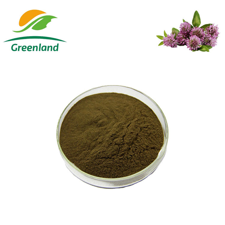 100% Natural Red Clover Extract 8% 20% 40% Isoflavone