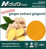 Natural food additive 5% gingerols powder ginger extract