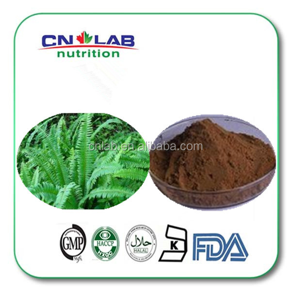 100% pure natural polypodium leucotomos powder /10:1 Polypodium leucotomos extract