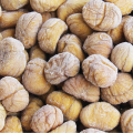 buy chestnuts shandong wholesale food