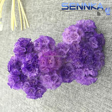 Decorative Raw Material Long Lasting Loose Worm Fruit for Artificial Preserved Rose Flower from Sennka