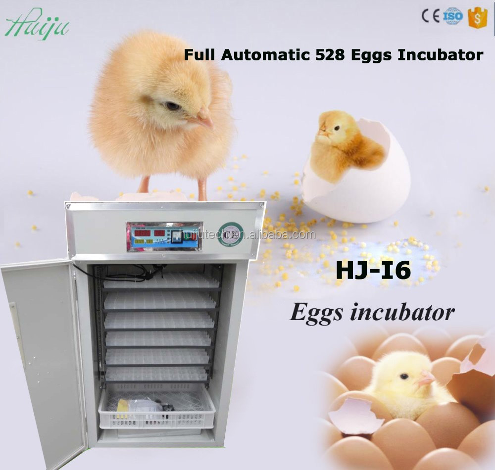 High recommended 528 chicken eggs incubator HJ-I6 in JiangXi