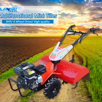 9HP Equipment Mini Inter Cultivation Tiller