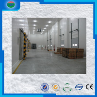 China manufacture good quality frozen beef cold room/cold storage