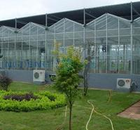 Venlo Agricultural Polycarbonate Sheet Greenhouse