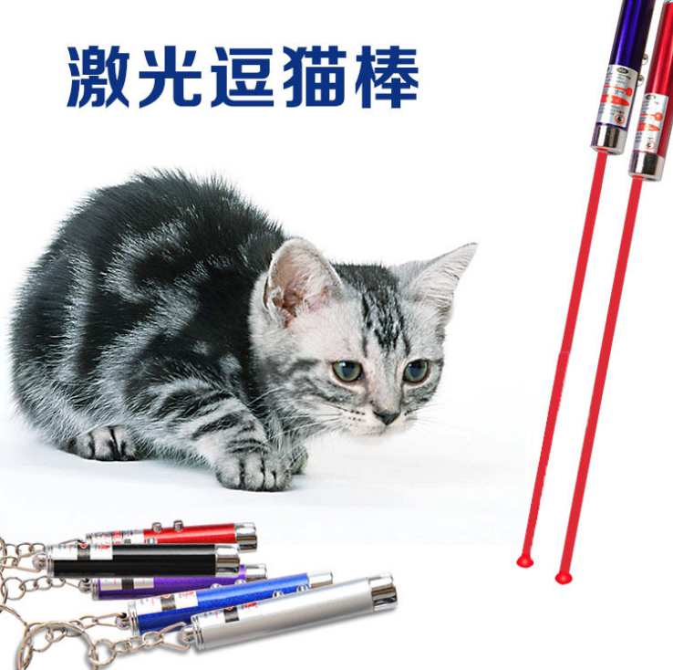 China export LED laser electonic pet cat toys red pointer keychain cat toy