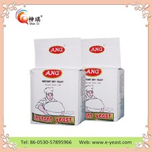 High quality low sugar bakery instant dry yeast manufacturers from China (OEM)