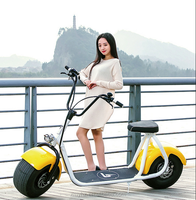 2016 newly fashion popular fat tyre citycoco electric scooter