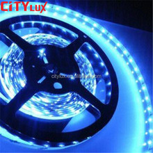 New led strips 12 volt 24V 30LEDs 80RA CRI BLUE SMD 5050 12V Flex Led Light Strip