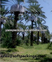 PE date tree bag/date palm bag two strings