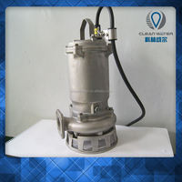 Stainless Steel Sea Water Pumps High Quality For Europe Market