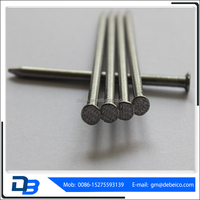 Linyi Q195 Electric- Galvanized Common Wire Nail Sizes From Shandong Manufacturer