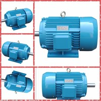 Squirrel cage fan drive 3 Phase AC Voltage high torque low rpm asynchronous induction motor( heavy duty electric motor for sale)