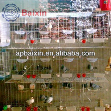 China factory supply zoo fencing/zinc coating hexagonal wire mesh roll packing (alibaba golden supplier)