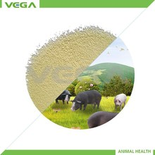 30% Rumen Protected Lysine bypass Lysine from China Manufactuer