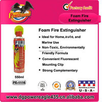 PE Easy Handle Car Small Fire Extinguisher