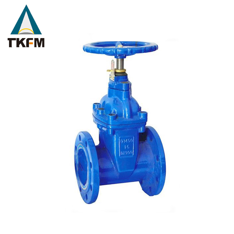 Chinese supplier new design gg25 sea water gate valve pn16 dn100 stainless steel sluice gate valve with low price