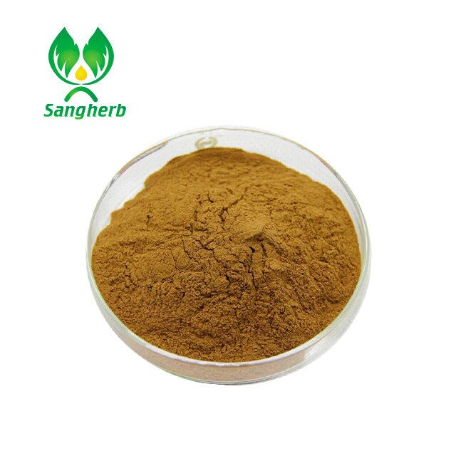 Manufacturer Supply 100% Pure Chinese Angelica Extract Dong Quai Extract with Ligustilide 1%