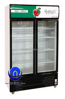 Manufacturer Supermarket upright refrigerator and freezers for restaurants China Supplier