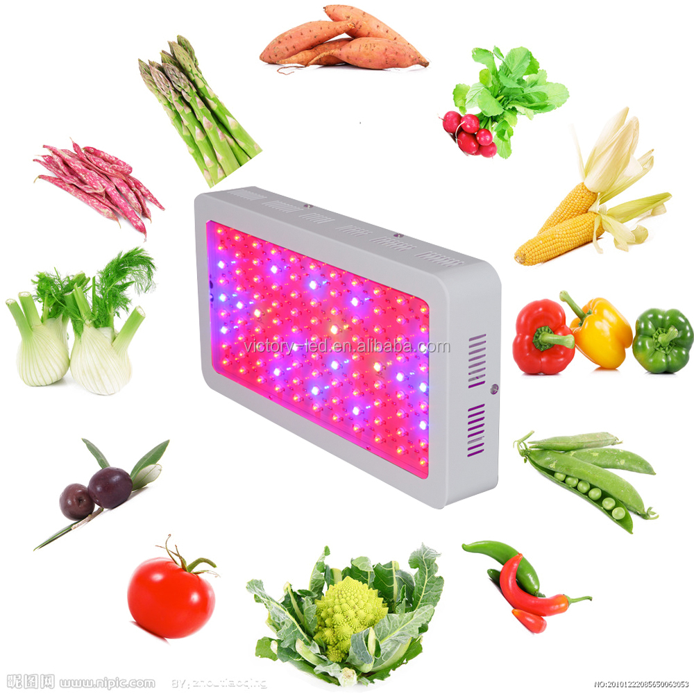 High Power 300W LED Grow Light Full Spectrum Panel Lamp for Plants Growth bloom