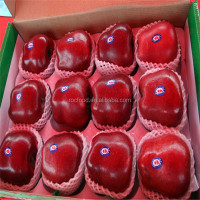 fresh red delicious apples from china huaniu apple