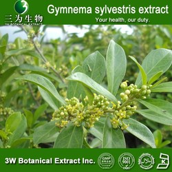 3W Factory Sale gymnema sylvestris extract,gymnema sylvestre Powder extract 25%