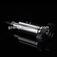High Quality and Low Price Plunger 2418455196 for engine
