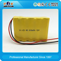 12V Ni-Cd AA 800mAh rechargeable battery pack with factory price