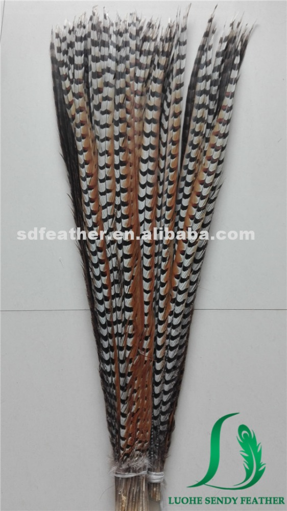 manufacture supplier 40-45 inches reeves pheasant tails natural color pheasant feathers for carnival
