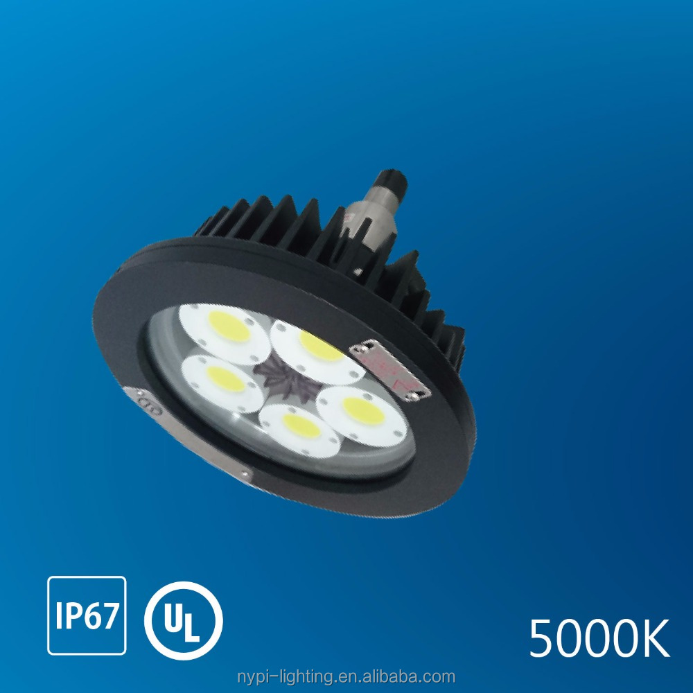 100W 5000K explosion proof hazardous led lighting (Pendant)