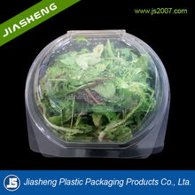 round PET transparent plastic salad clamshell containers and vegetable storage plastic containers